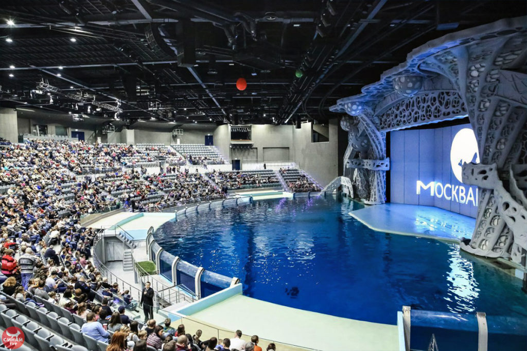 Зрительный зал и бассейн