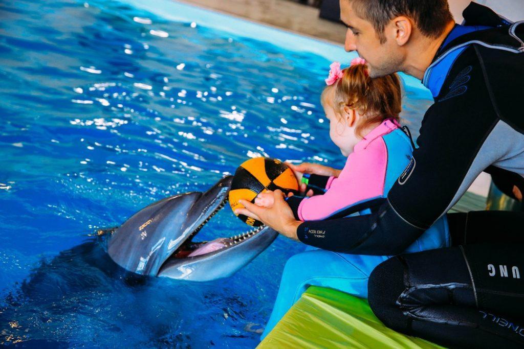 москвариум центр плавания с дельфинами