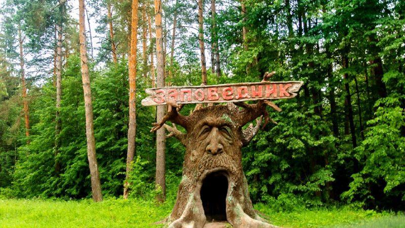 Приокско-Террасный заповедник
