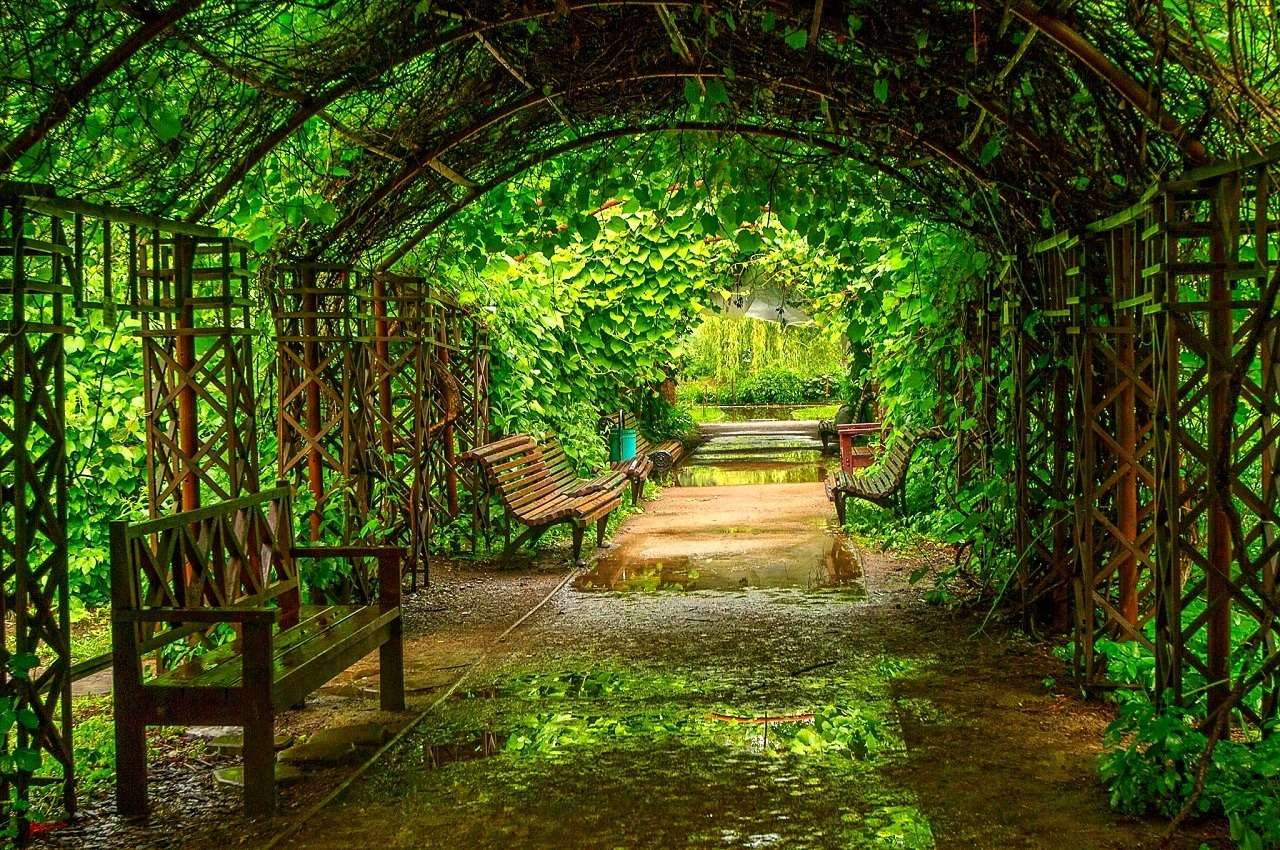 Ботанический сад МГУ им. М. В. Ломоносова «Аптекарский огород» в Москве