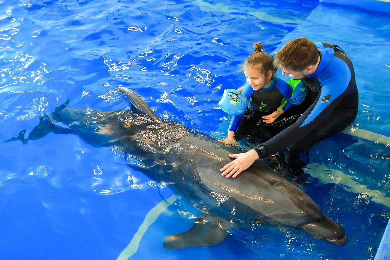 Дельфинотерапия в Москвариуме