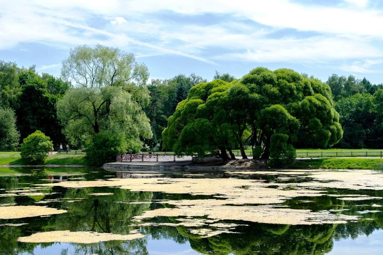 Дендрарий Ботанического сада в Москве