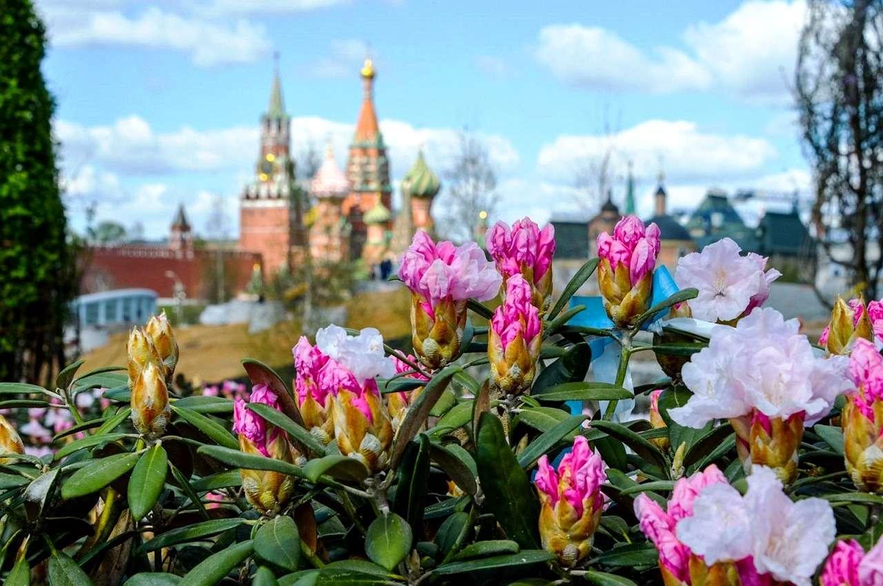 Лето в Москве — варианты времяпрепровождения