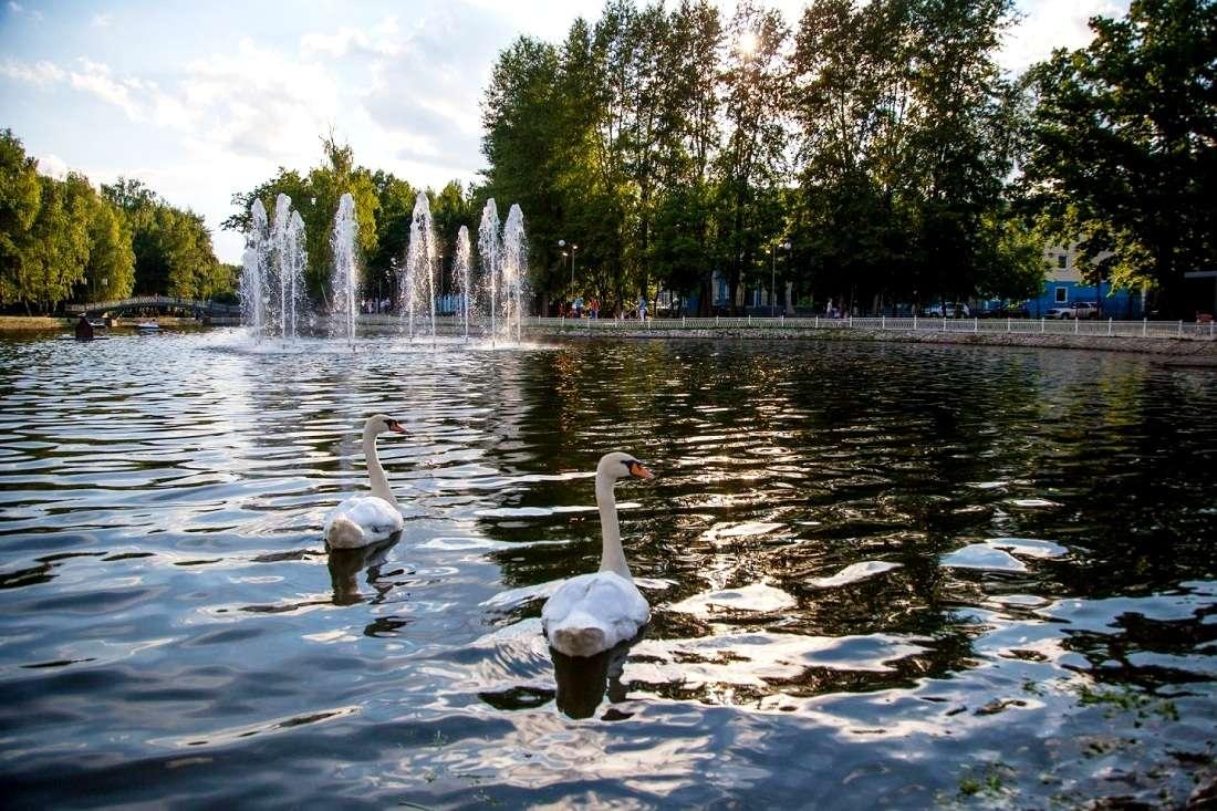 Нижний Лианозовский пруд в Лианозовском парке