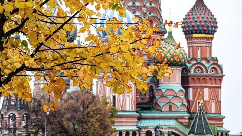 Осень в Москве: чем заняться и куда сходить