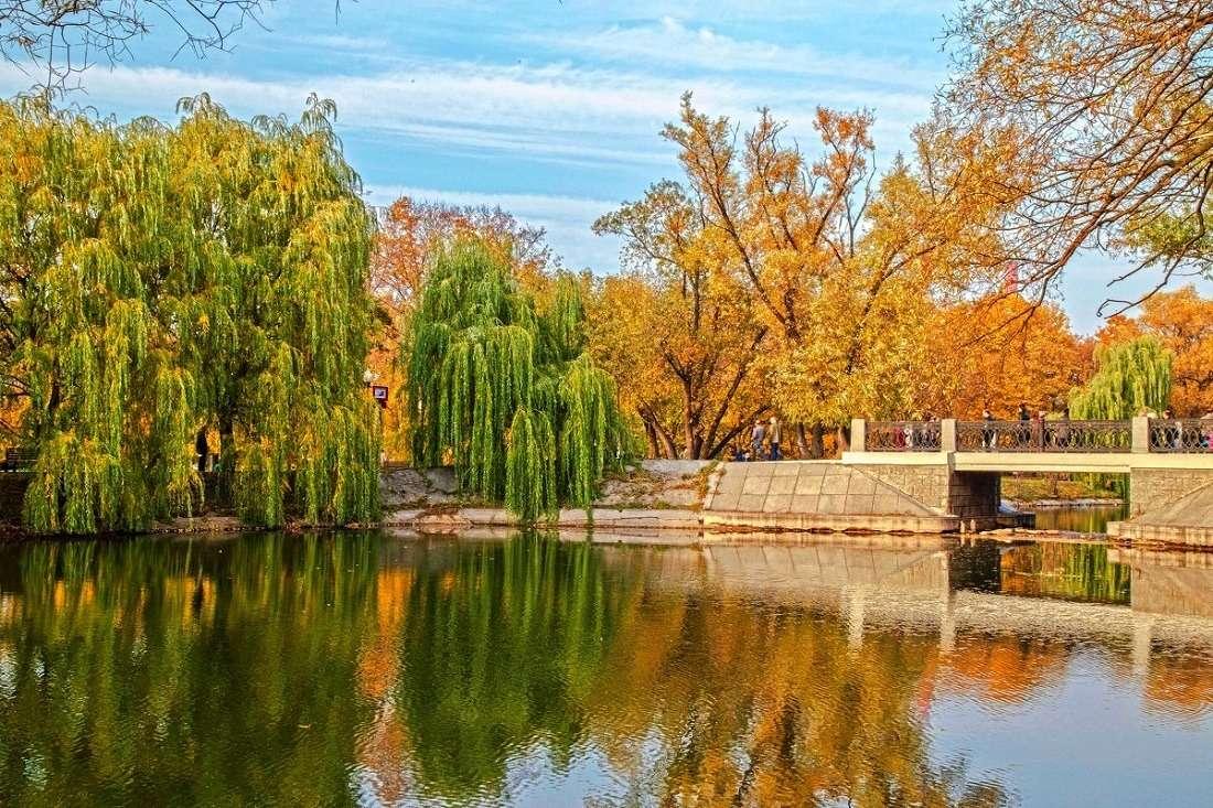 Парк Новодевичьи пруды
