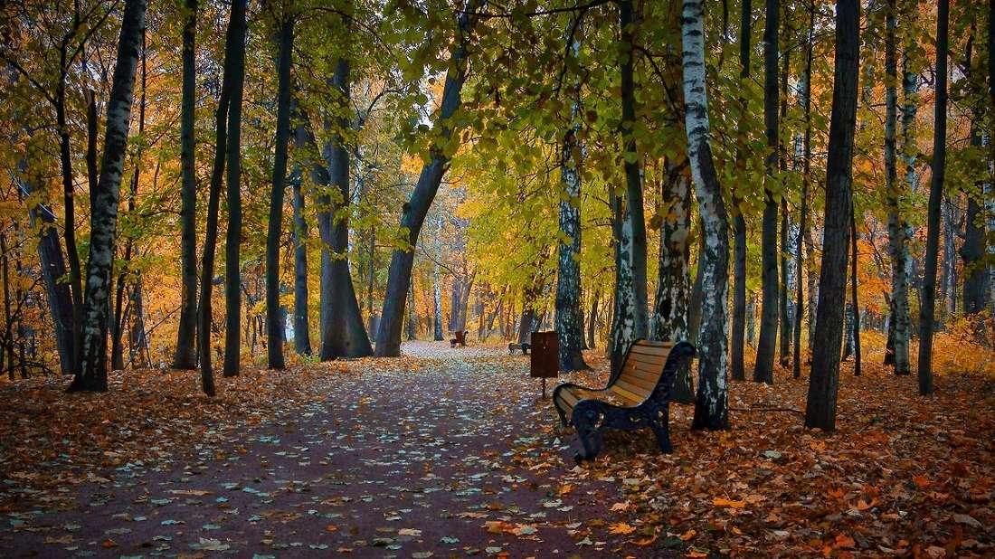 Перовский парк осенью